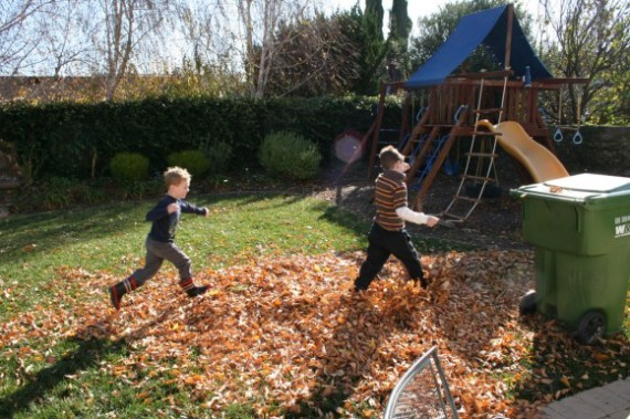 little boys jumping in leaves