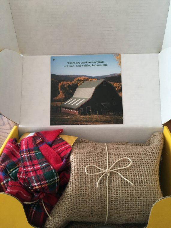 vellabox packaging